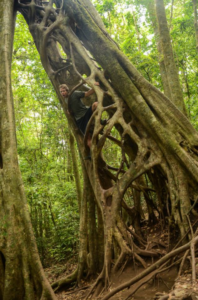 Strom2 Kostarika