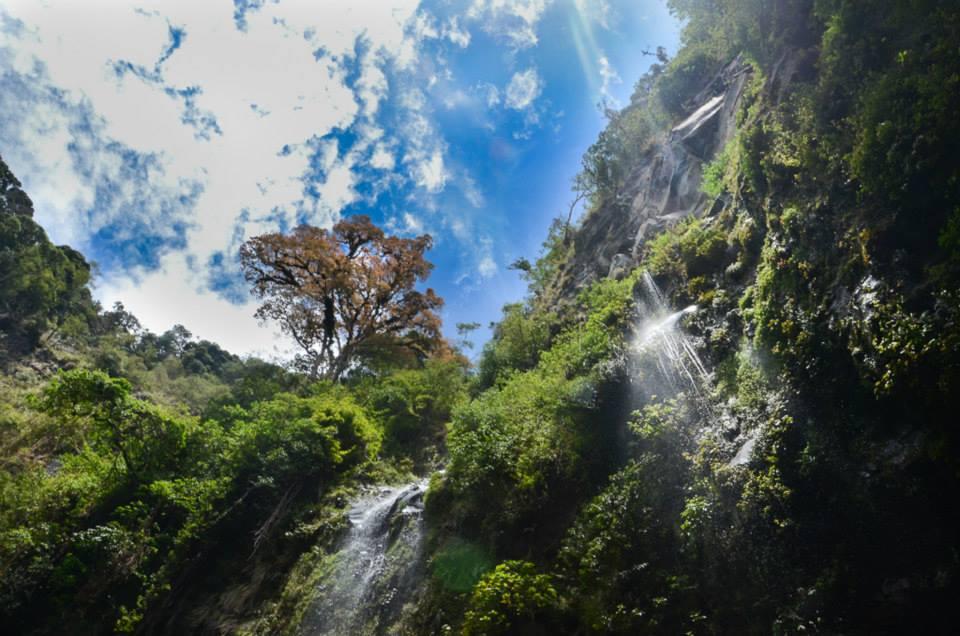 Panama-Boquete-priroda