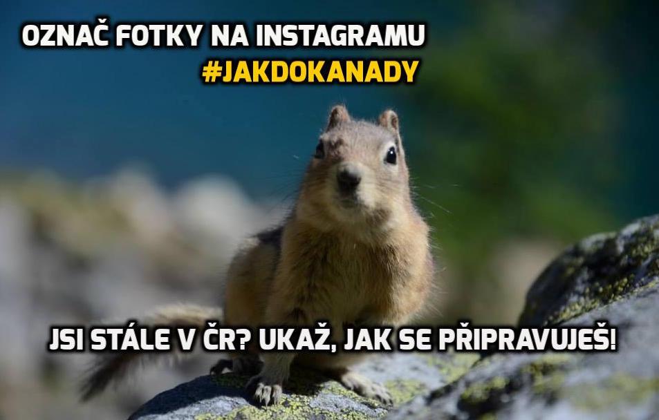 instagram-jakdokanady