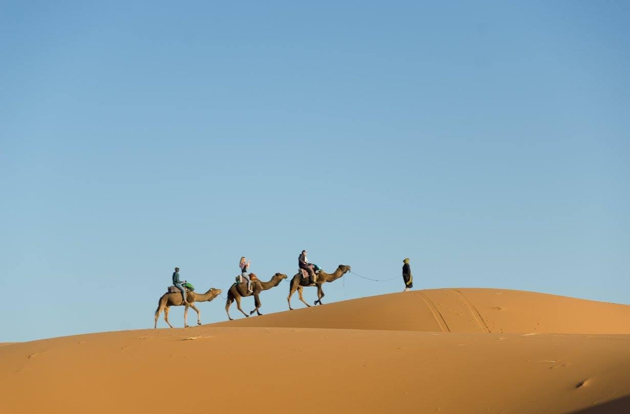 Jízda na velbloubovi Sahara Maroko