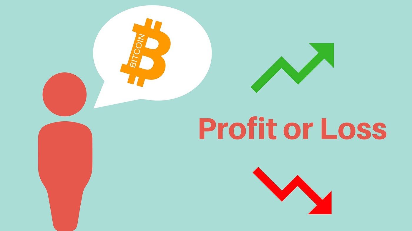 bitcoin investice kryptoměny