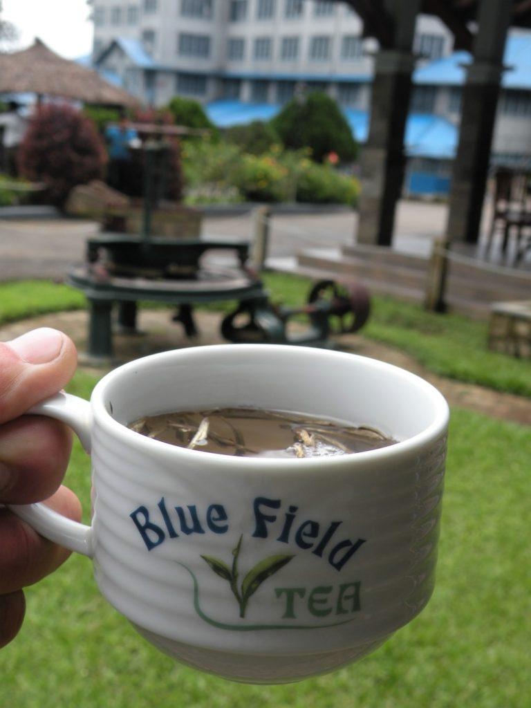 Srílanský čaj