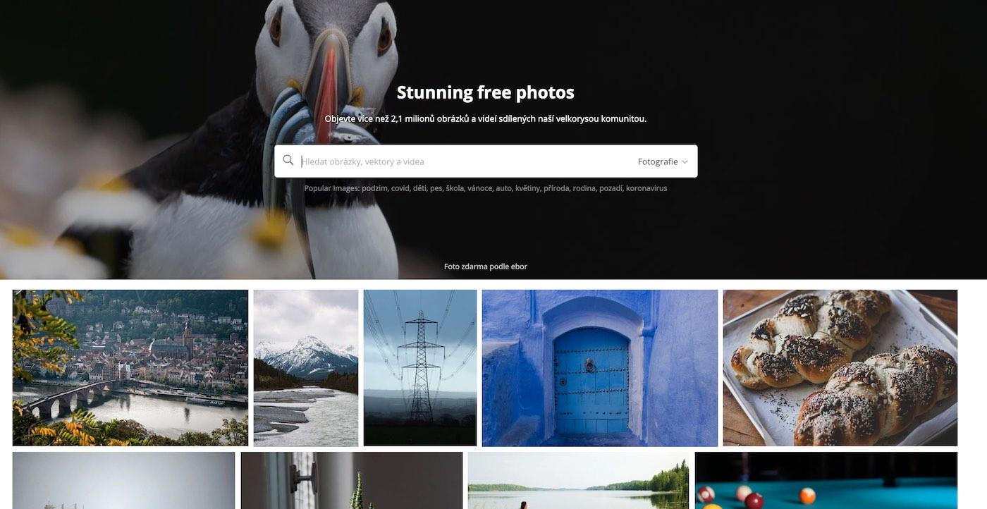 free fotobanky nejlepší zdarma
