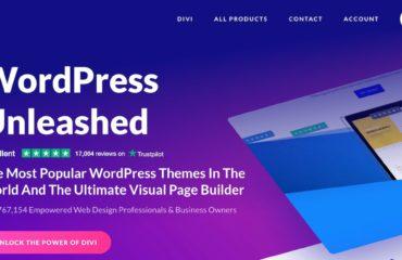 divi šablona wordpress